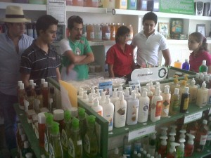 "Curriculum in Action at the ""Econoia"" Store"
